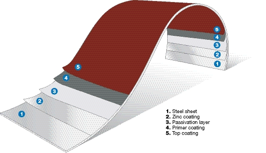 Cross section of the steel sheet with paint and zinc layers